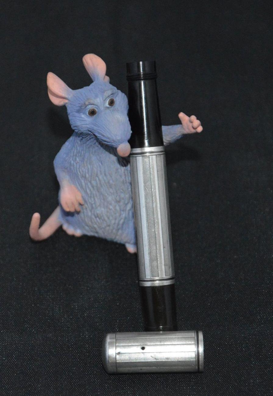 waterman rat1